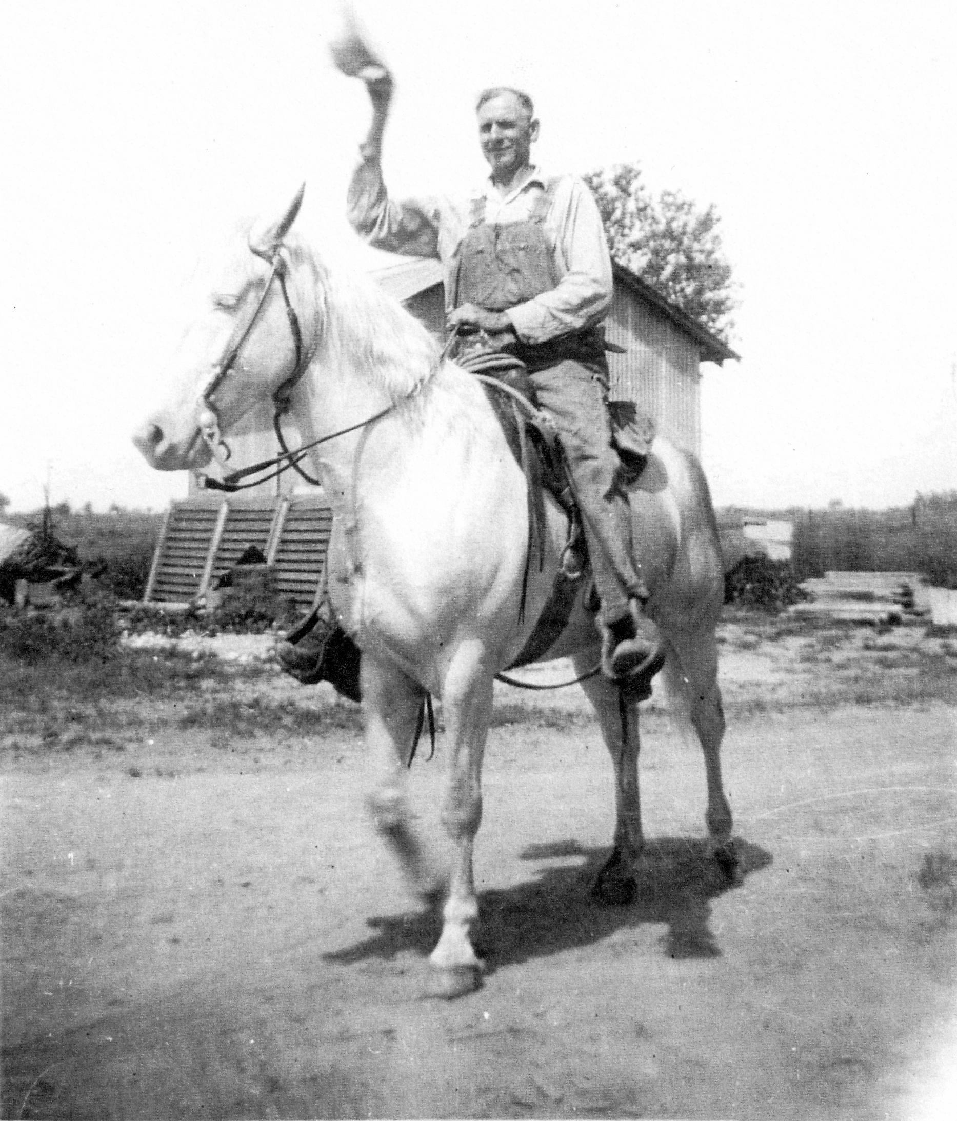 grandfather horse2