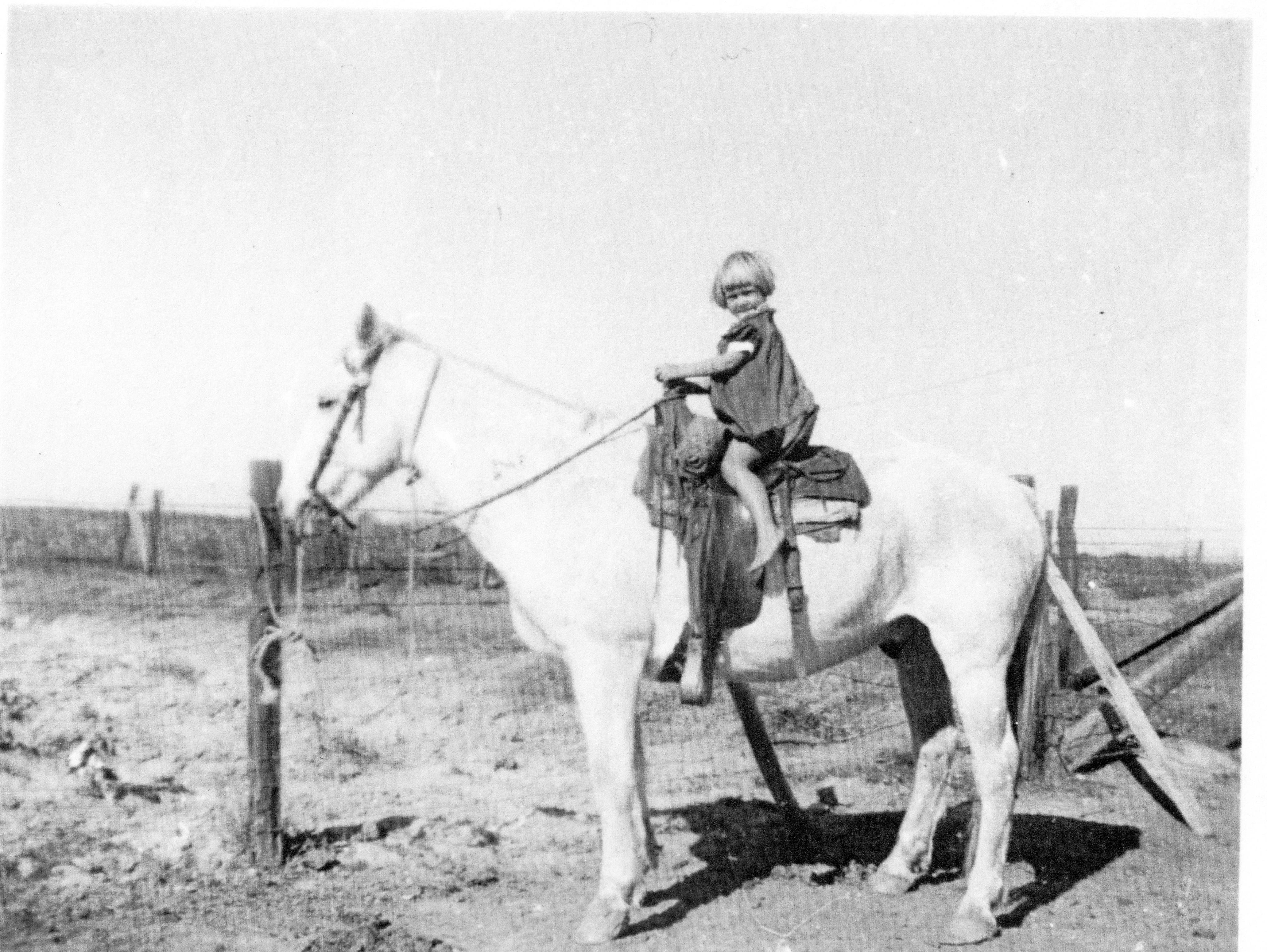 Mary Lou horse